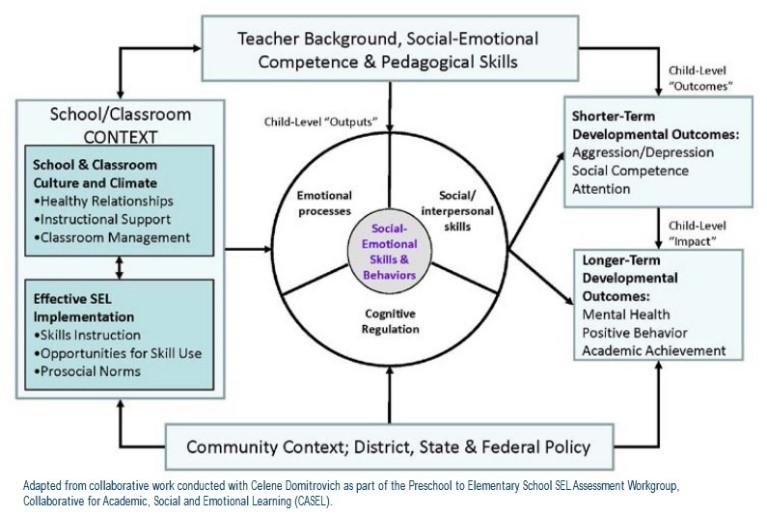 Organizing Framework for SEL