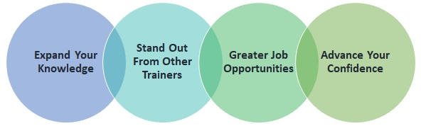 why you should enrol in a professional diploma in train the trainer course online